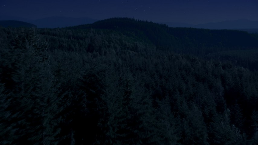 Day for night color corrected aerial footage of a vast evergreen forest on a ridge in the Cascade Range, Washington Aerial Stock Footage | AX48_082_DFN