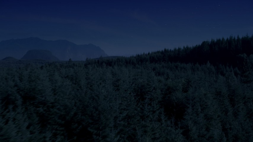 4K day for night color corrected aerial footage of flying over and pan across evergreen forest on a mountain ridge in the Cascade Range, Washington Aerial Stock Footage | AX48_084_DFN
