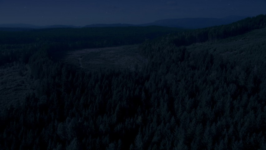 Day for night color corrected aerial footage of evergreens and pan across forest and clear cut areas, King County, Washington Aerial Stock Footage | AX48_094_DFN