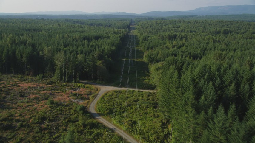 5K stock footage aerial video of following power lines past a clear cut area and through a forest, King County, Washington Aerial Stock Footage | AX49_007