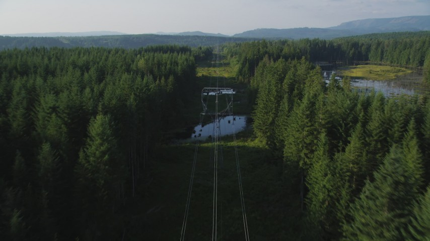 5K stock footage aerial video of following power lines cutting through a forest, King County, Washington Aerial Stock Footage | AX49_011