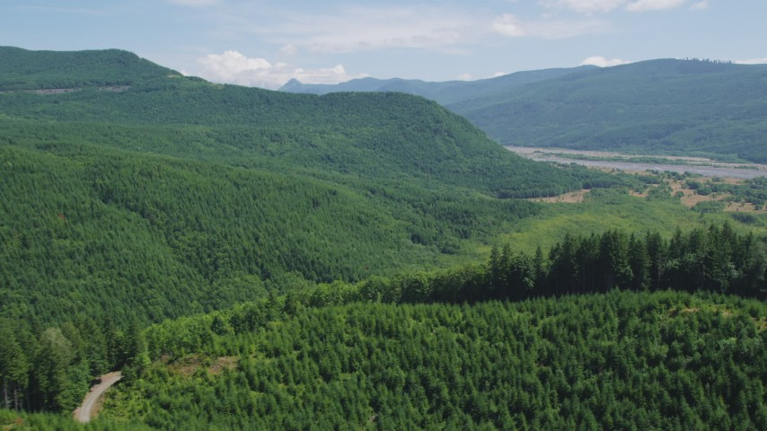5K stock footage aerial video fly over evergreen forest and hills to approach North Fork Toutle River in Washington Aerial Stock Footage | AX52_030