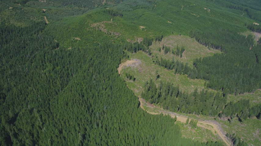 5K stock footage aerial video of evergreen forests and clear cut logging areas, Skamania County, Washington Aerial Stock Footage | AX52_065