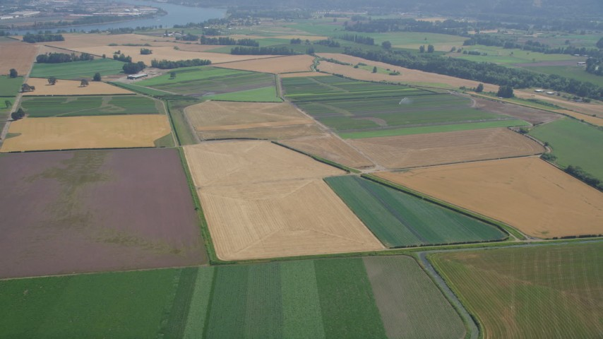 5K stock footage aerial video fly over crop fields in Riverview, Oregon Aerial Stock Footage | AX52_100