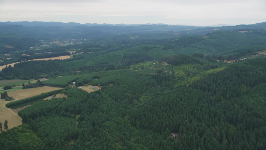 5K stock footage aerial video approach small farms beside evergreen forest in Washington County, Oregon Aerial Stock Footage AX56_016 | Axiom Images