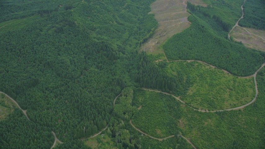 5K stock footage aerial video of dirt roads through evergreen forest and clear cut areas in Washington County, Oregon Aerial Stock Footage | AX56_024