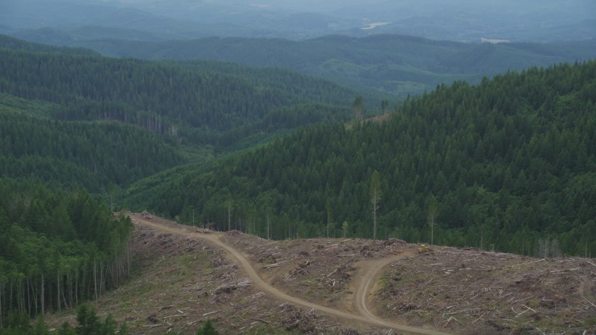 5K stock footage aerial video fly over a clear cut area with a view of evergreen forest in Clatsop County, Oregon Aerial Stock Footage   AX56_035