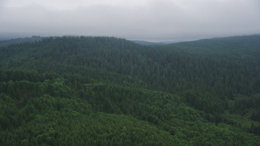 5K stock footage aerial video fly over wooded hills in Clatsop County, Oregon Aerial Stock Footage | AX56_043