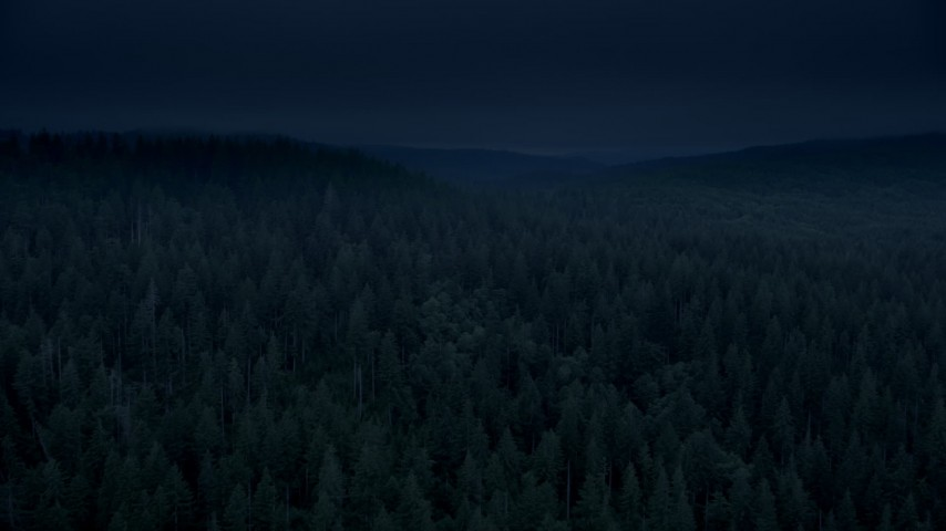 Day for night color corrected aerial footage of evergreen forest, reveal a hillside clear cut area in Clatsop County, Oregon Aerial Stock Footage | AX56_044_DFN