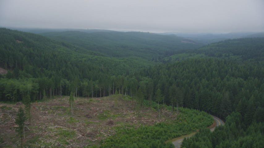 5K stock footage aerial video fly over a logging area and evergreen forest in Clatsop County, Oregon Aerial Stock Footage | AX56_047
