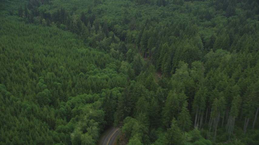 5K stock footage aerial video flyby State Route 202 through forest, Clatsop County, Oregon Aerial Stock Footage   AX56_048