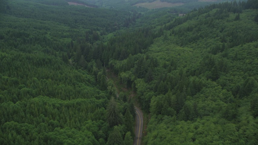 5K stock footage aerial video fly over State Route 202 through evergreen forest, Clatsop County, Oregon Aerial Stock Footage | AX56_049