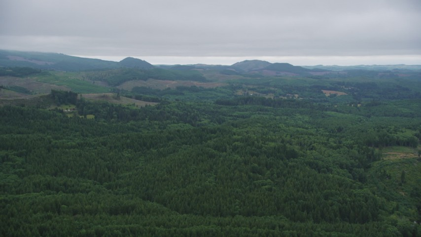5K stock footage aerial video of evergreen forest and clear cut areas in the hills in Clatsop County, Oregon Aerial Stock Footage | AX56_061