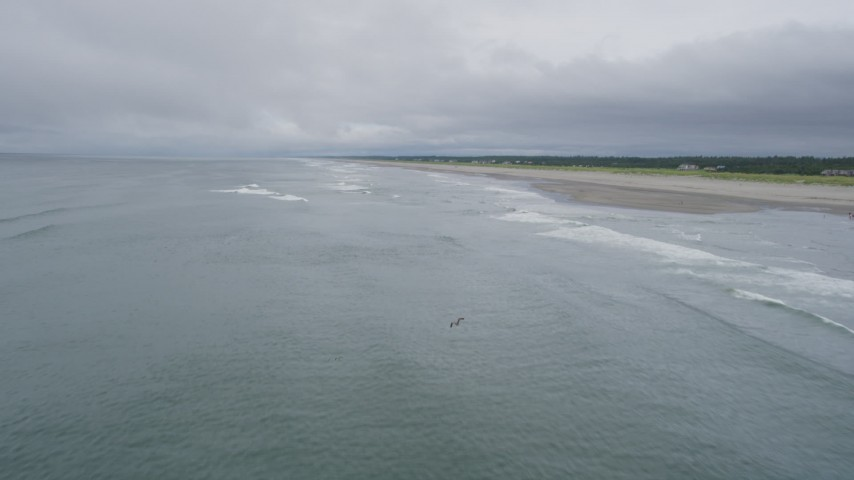 5K stock footage aerial video of ocean waves rolling toward a beach with a few people on the shore in Long Beach, Washington Aerial Stock Footage | AX56_137