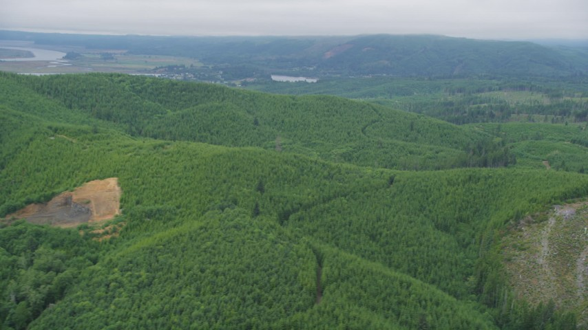 5K stock footage aerial video of evergreen forest and logging areas in Pacific County, Washington Aerial Stock Footage | AX56_170