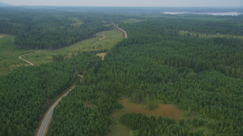5K stock footage aerial video fly over evergreen forest beside a road and logging area in Grapeview, Washington Aerial Stock Footage | AX58_016