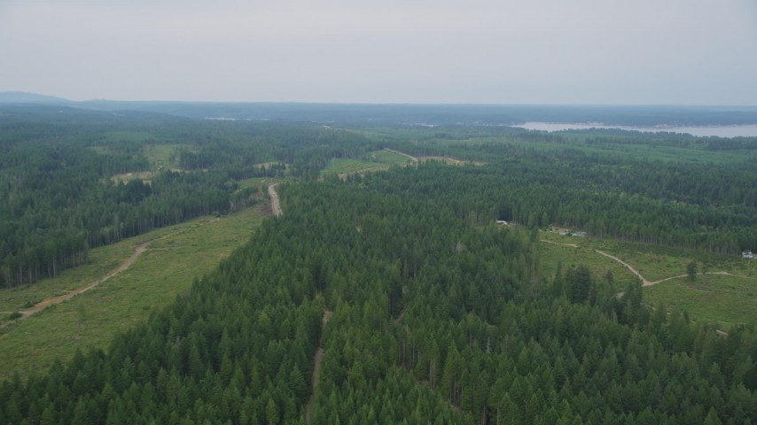 5K stock footage aerial video fly over evergreen forest to approach rural homes in Grapeview, Washington Aerial Stock Footage | AX58_017