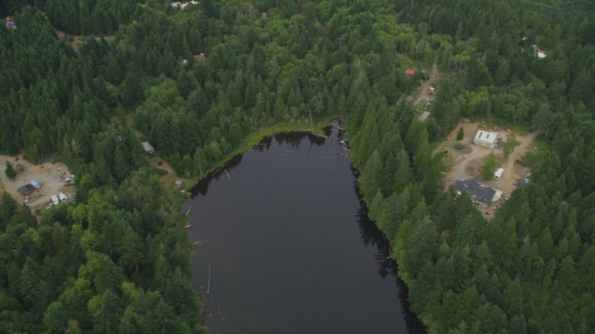 5K stock footage aerial video of bird's eye view of lakefront homes and evergreen trees in Grapeview, Washington Aerial Stock Footage | AX58_018
