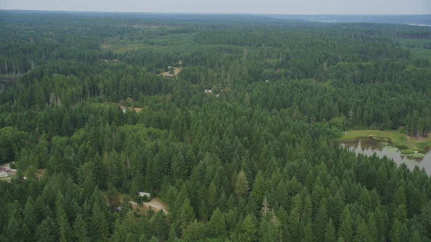 5K stock footage aerial video fly over forest and rural homes in Vaughn, Washington Aerial Stock Footage | AX58_027