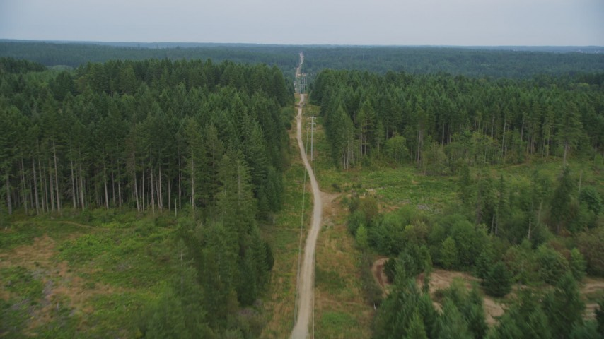 5K stock footage aerial video follow a dirt road and power lines through forest and reveal rural homes in Gig Harbor, Washington Aerial Stock Footage | AX58_037