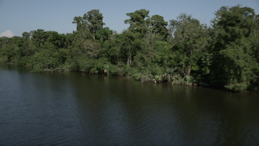 5K stock footage aerial video of trees and swamp bordering a river, St. John the Baptist Parish, Louisiana Aerial Stock Footage | AX60_072