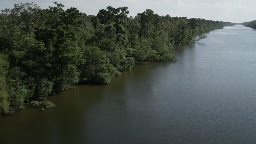 5K stock footage aerial video of swamps and trees beside a river in St. John the Baptist Parish, Louisiana Aerial Stock Footage | AX60_073
