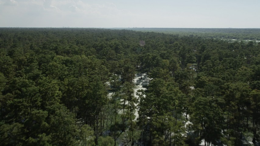 5K stock footage aerial video fly over and pan across a vast swamp in St. John the Baptist Parish, Louisiana Aerial Stock Footage | AX60_082
