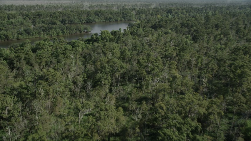 5K stock footage aerial video fly over a swamp to reveal a river in St. John the Baptist Parish, Louisiana Aerial Stock Footage | AX60_083