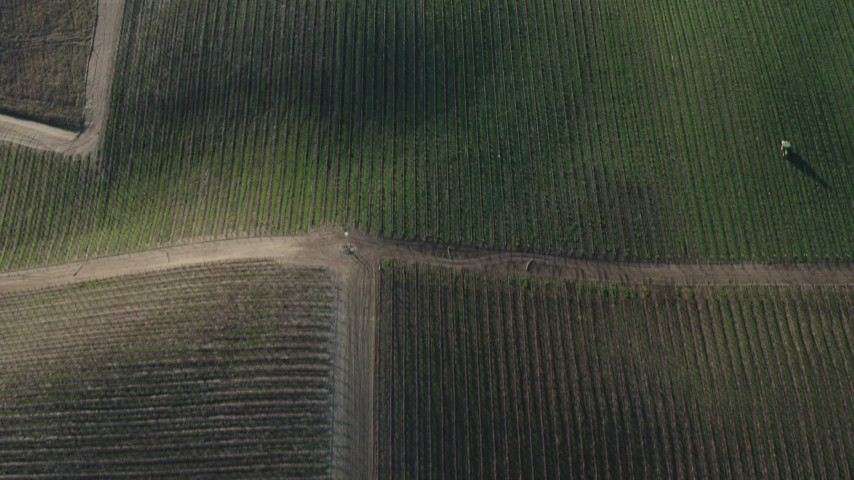 4K stock footage aerial video Bird's eye view of hilly vineyards in Paicines, California Aerial Stock Footage   AX70_134