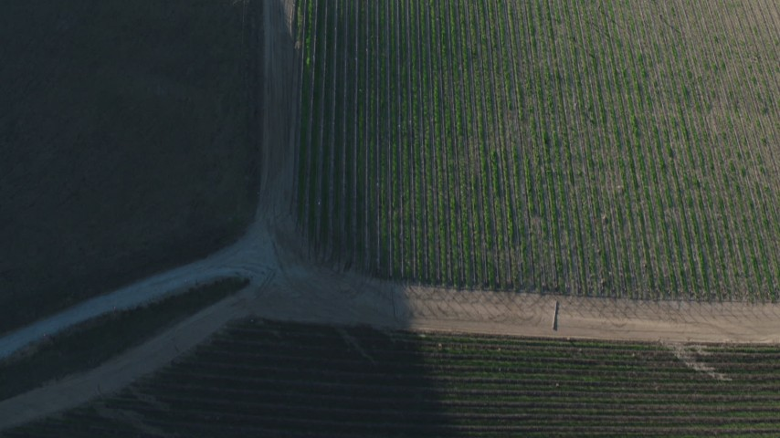 4K stock footage aerial video A bird's eye view of roads and vineyards in Paicines, California Aerial Stock Footage   AX70_135