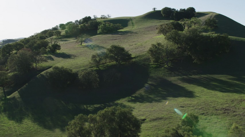 4K stock footage aerial video Fly over trees toward a hilltop in Paicines, California Aerial Stock Footage   AX70_144