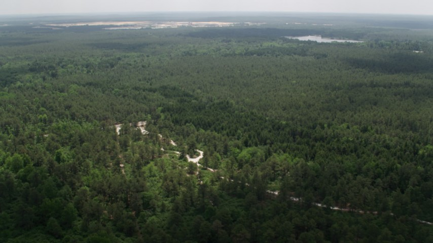 5K aerial video approaching and tilting to Dover Road through the Pine Barrens, New Jersey Aerial Stock Footage | AX71_117