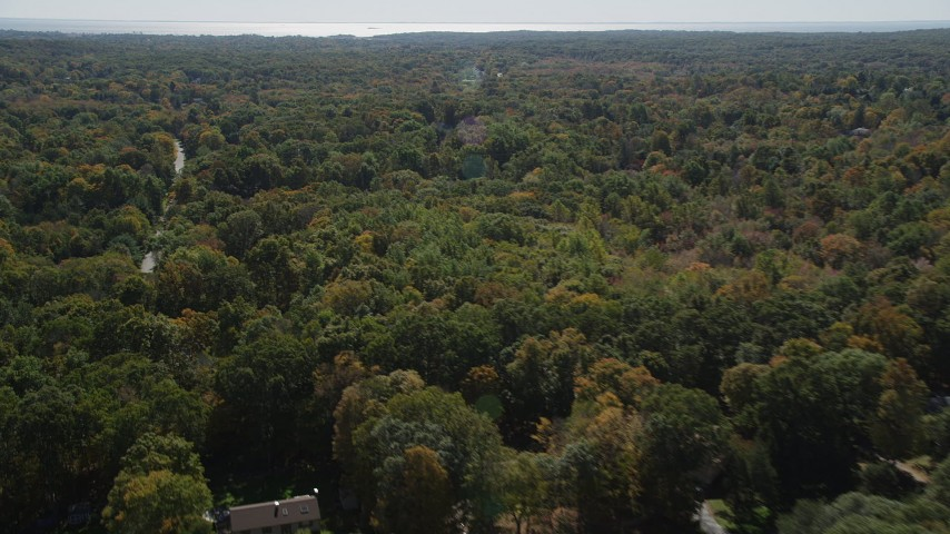 4K stock footage aerial video flyby homes and forest, reveal road through forest in autumn, Guilford, Connecticut Aerial Stock Footage | AX91_177