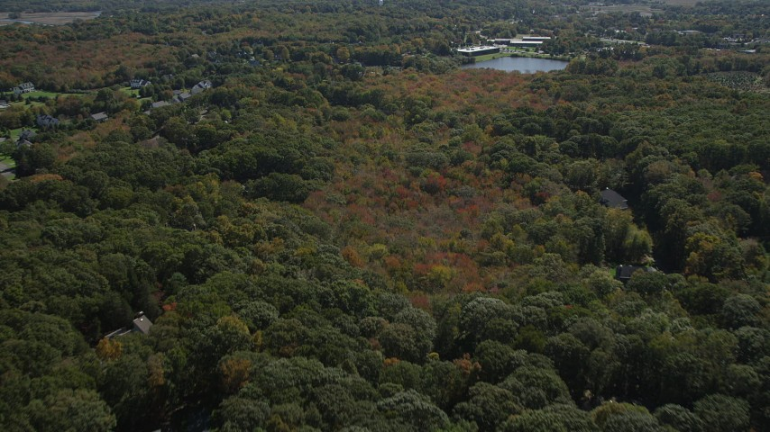 4K stock footage aerial video of approaching suburban neighborhoods from forests, autumn, Guilford, Connecticut Aerial Stock Footage | AX91_183