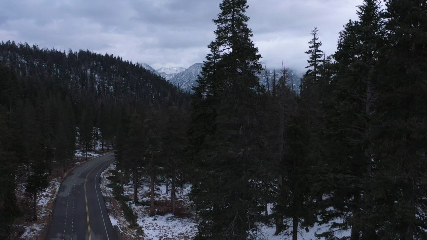 4K stock footage aerial video of snowy mountains, descend by road through evergreen forest, Inyo National Forest, California Aerial Stock Footage | CAP_019_012