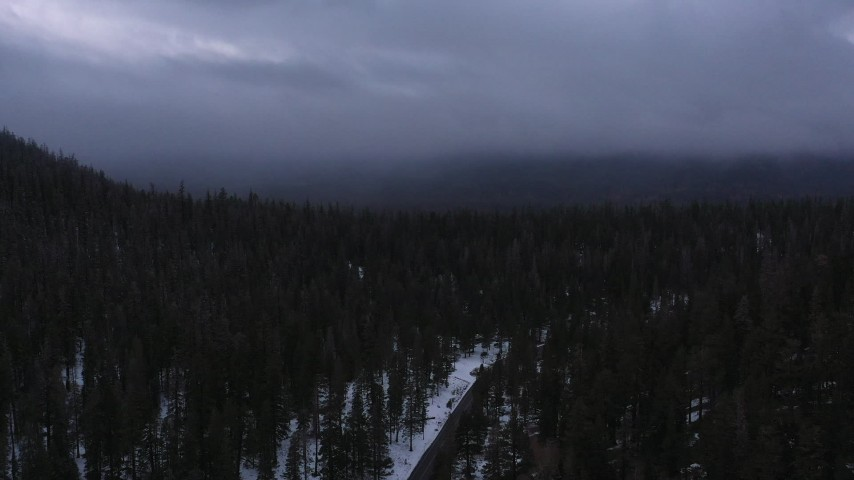 4K stock footage aerial video of following a road toward evergreen forest with snow, Inyo National Forest, California Aerial Stock Footage | CAP_019_018