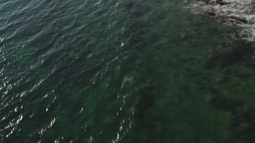 Tilt from Ocean Waves to Reveal Oceanfront Homes in Malibu Aerial Stock Footage | DCLA_155