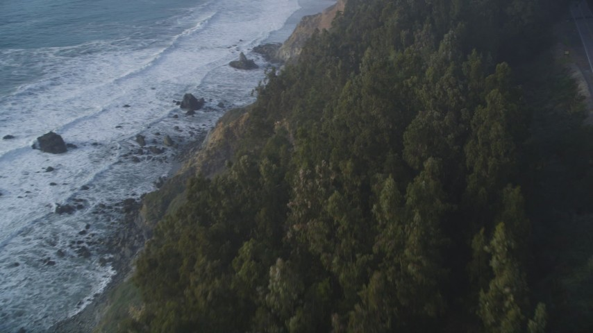 5K aerial video Fly over trees on the coastal cliffs of Big Sur, California Aerial Stock Footage | DCSF03_044