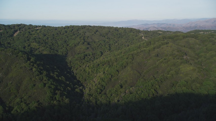 5K stock footage aerial video Fly over forest to reveal green mountain ridges, Los Padres National Forest, California Aerial Stock Footage | DCSF03_055