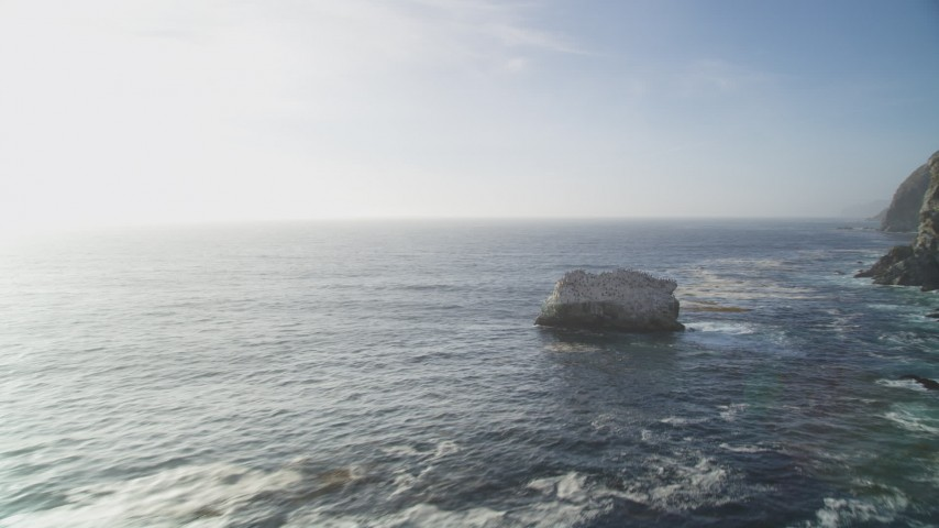 5K aerial video of flying low over ocean past birds perched on rock formation, Big Sur, California Aerial Stock Footage | DFKSF03_124