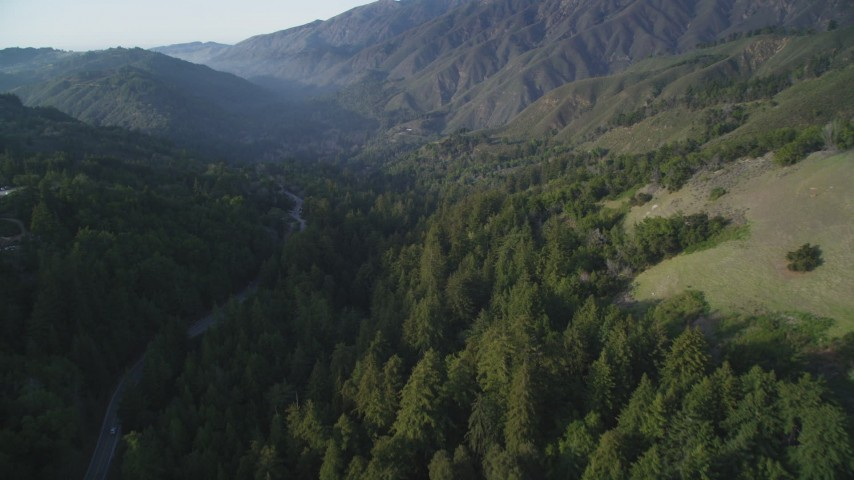5K aerial video of following Highway 1 through evergreen forest, Big Sur, California Aerial Stock Footage | DFKSF03_131