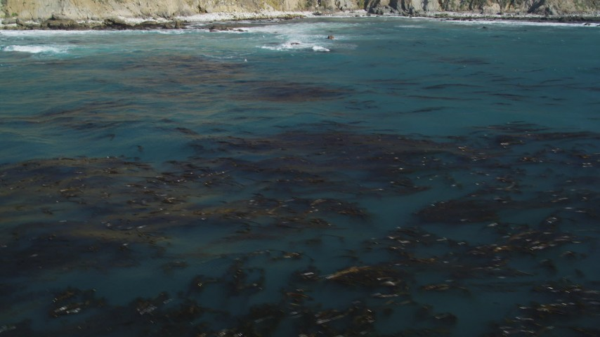 5K stock footage aerial video of tilting from floating kelp to reveal coastal cliffs, Big Sur, California Aerial Stock Footage | DFKSF16_082