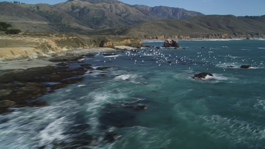 5K aerial video of passing by seagulls in flight near the coastline, Big Sur, California Aerial Stock Footage | DFKSF16_097