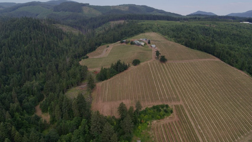 5.7K stock footage aerial video wide angle orbit of winery, Hood River, Oregon Aerial Stock Footage | DX0001_000327