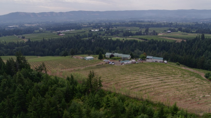 5.7K stock footage aerial video orbit of a winery and vineyard, Hood River, Oregon Aerial Stock Footage | DX0001_000331
