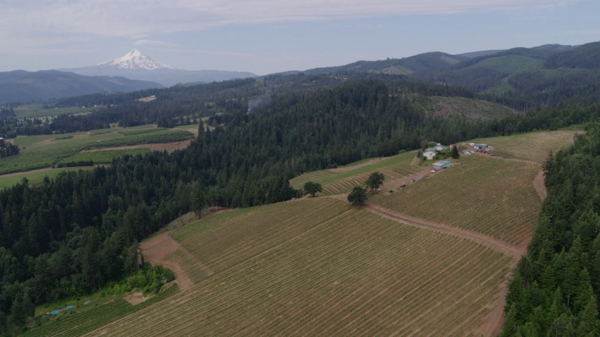 5.7K stock footage aerial video wide angle orbit of a winery with a view of Mt Hood, Hood River, Oregon Aerial Stock Footage | DX0001_000333
