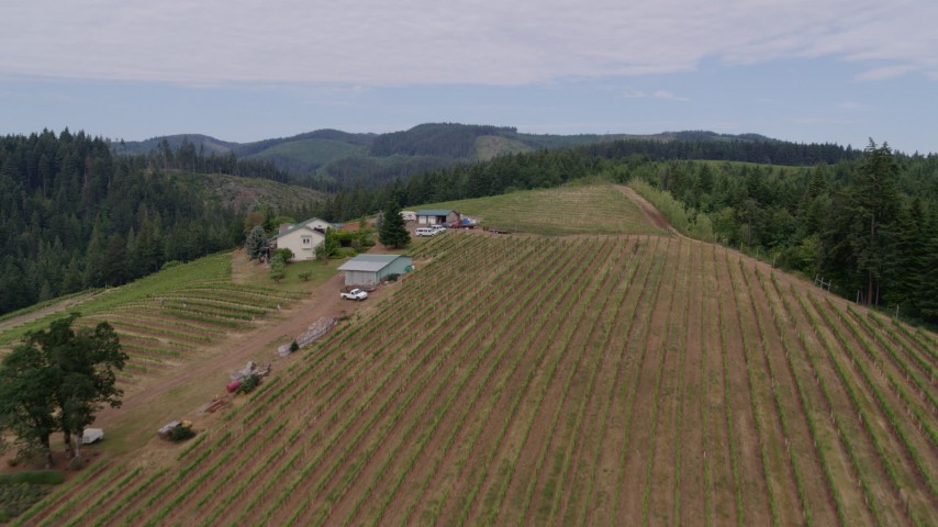 6k drone aerial video flying over vineyards and tasting rooms, Hood River, Oregon Aerial Stock Footage | DX0001_000335