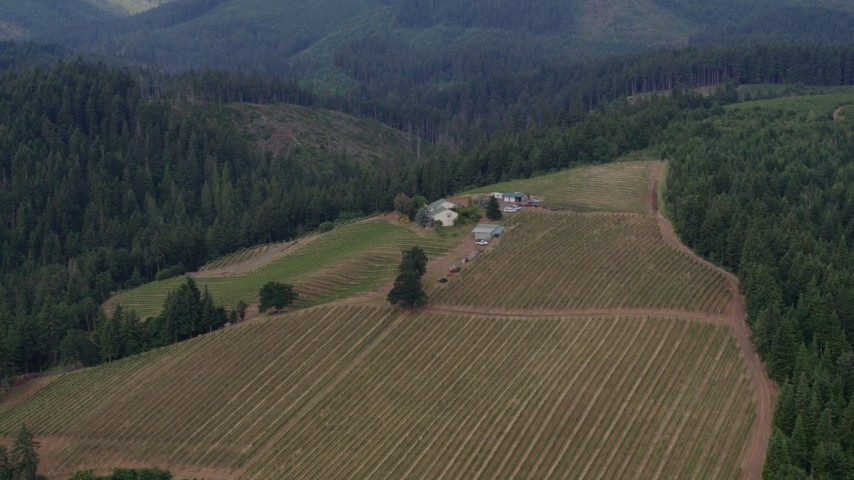 5.7K stock footage aerial video of a hilltop winery surrounded by forests, Hood River, Oregon Aerial Stock Footage | DX0001_000358