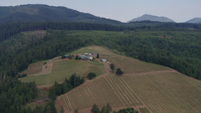 5.7K aerial video of a view of vineyards and winery beside forest, Hood River, Oregon Aerial Stock Footage | DX0001_000359