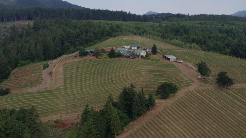 5.7K aerial video fly over the vineyard to approach the Phelps Creek winery in Hood River, Oregon Aerial Stock Footage | DX0001_000360